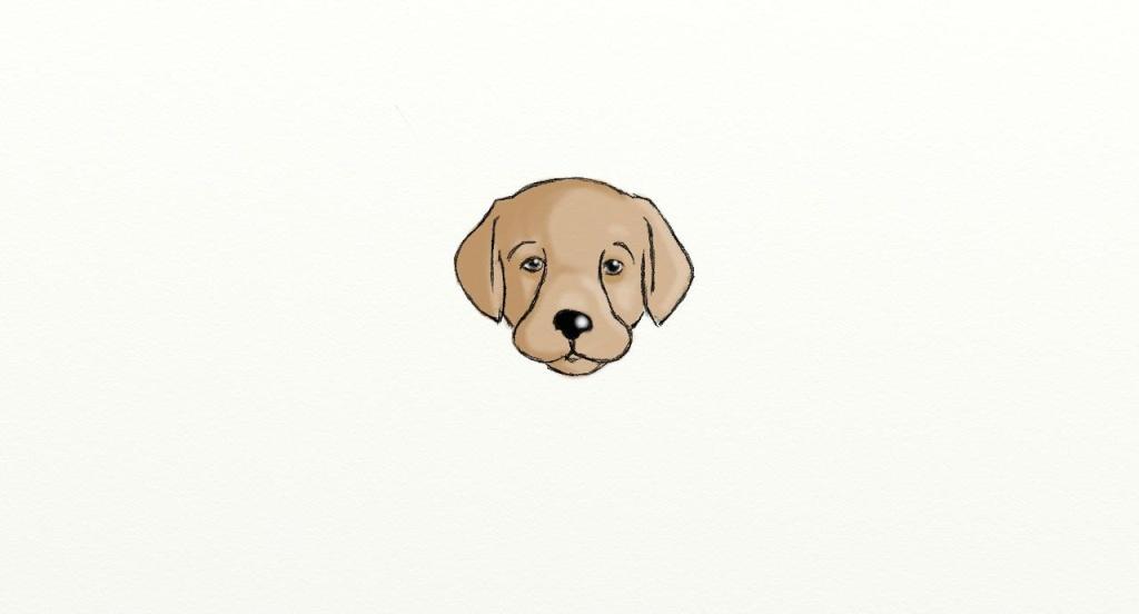 tete de chien Colo_c11