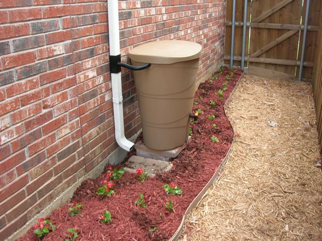 When is it safe to start filling my rain barrel? Rainba10
