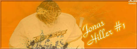 Ducks d'Anaheim C_user49