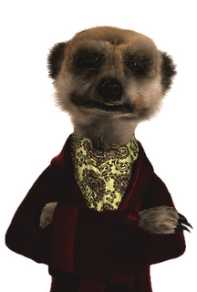 Who's Your Favourite Sonic Character Besides Sonic? Meerka10
