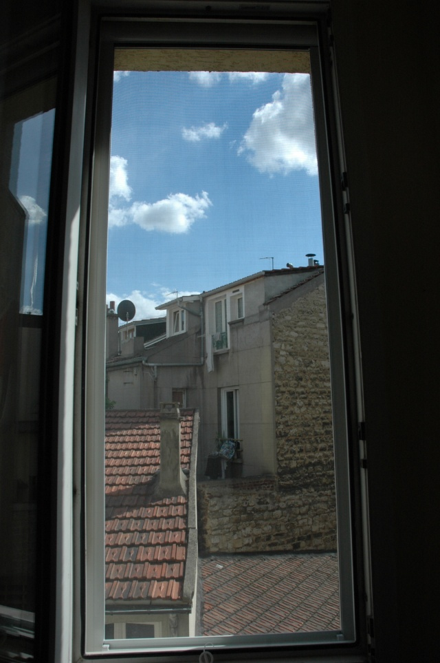 Installation protection fenêtres et balcons - Page 2 Mousti11
