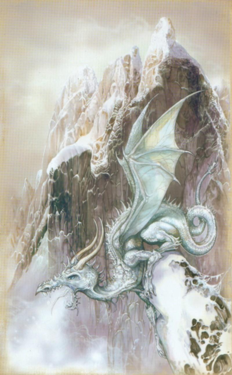Jonathan Heire débarque... :p - Page 2 Dragon11