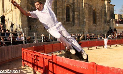 1° JOURNEE DU PRINTEMPS DES ROYALES  NICOLLIN  20-03-2011 1a-jou11