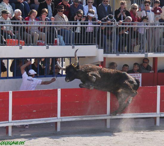 GRAU DU ROI    Concours des Manades  18-04-2010 Grau-d14