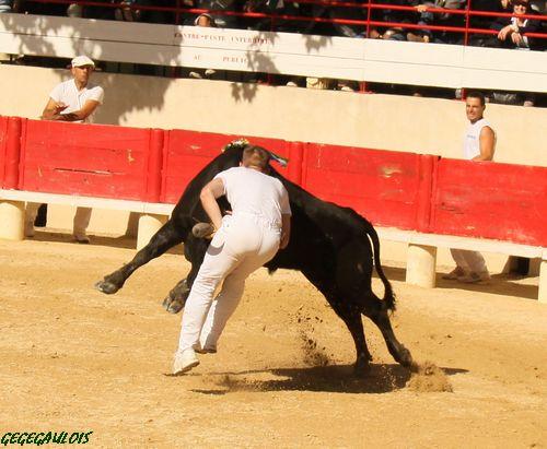 Super Royale de Fabre Mailhan  Lansargues  20-06-2010 Lansar24