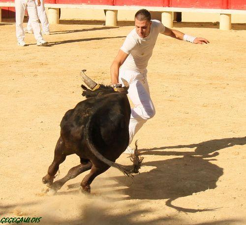 Super Royale de Fabre Mailhan  Lansargues  20-06-2010 Lansar25