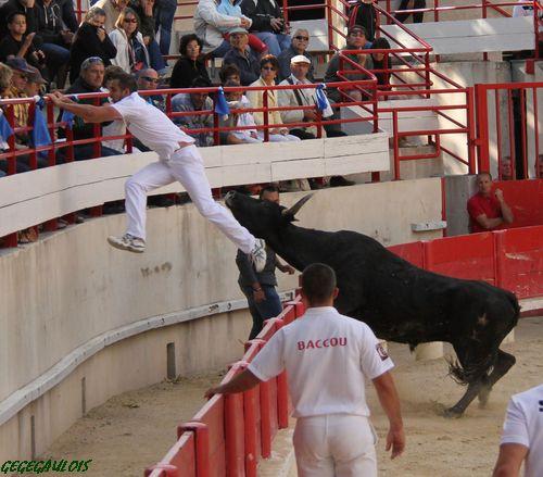 Super Royale de Fabre Mailhan  Lansargues  20-06-2010 Lansar27