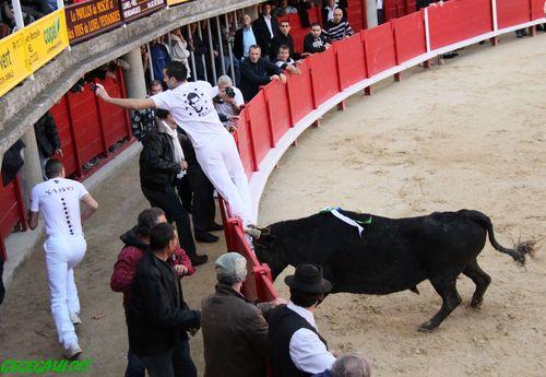 Les adieux de Sabri ALLOUANI    Lunel 13-11-2010 Les-ad11