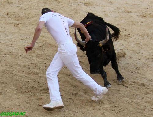 Les adieux de Sabri ALLOUANI    Lunel 13-11-2010 Les-ad12