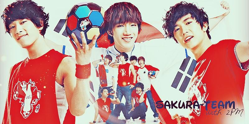 Sakura-Team