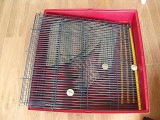 cage ferplast XL (44) Dscf7110