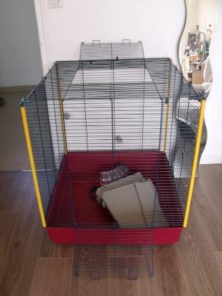 cage ferplast XL (44) Dscf7112