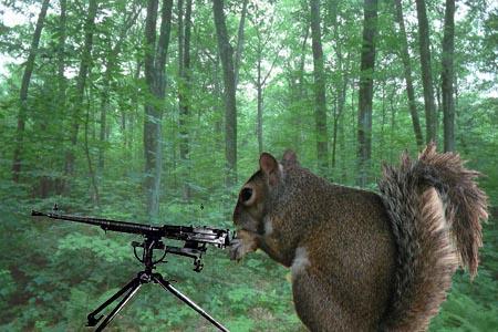 Kenshin3000's Squirrel Task Force-1 Squirr10