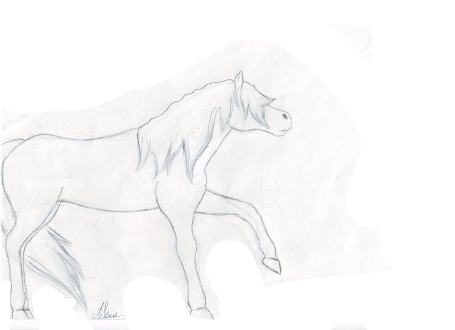 chevaux d'alexie Cheval10