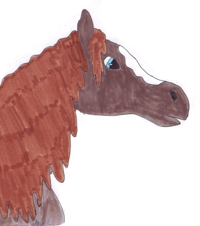 chevaux d'alexie Cheval12