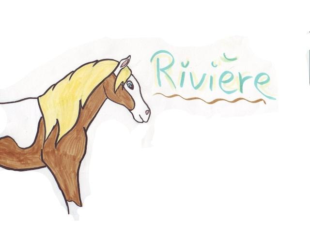 chevaux d'alexie Riviar10