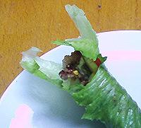 Dukan Spicy Turkey Wraps Dukan-10