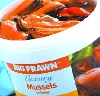 Hi I'm Miss Fishy Mussel10