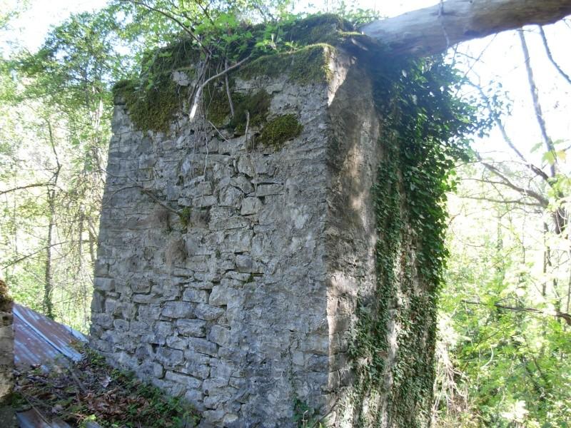 Νερόμυλος - περιοχή Αγίας Βαρβάρας Dscn0512