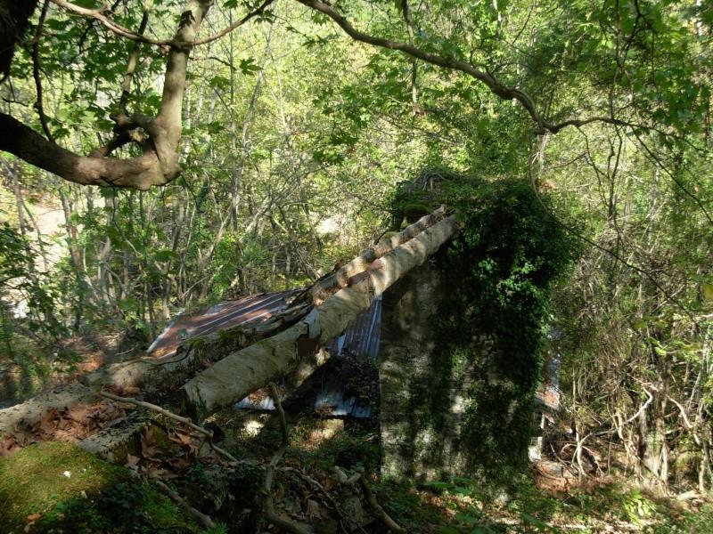 Νερόμυλος - περιοχή Αγίας Βαρβάρας Dscn0513