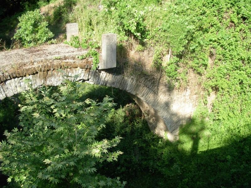 Η Γέφυρα του Πλαστήρα στην Άνω Καλεντίνη Dscn0711