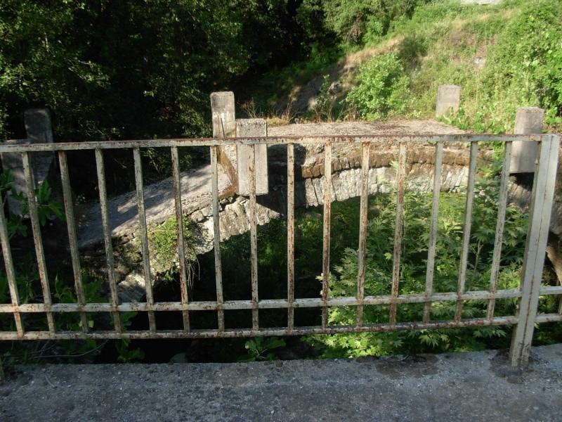 Η Γέφυρα του Πλαστήρα στην Άνω Καλεντίνη Dscn0714