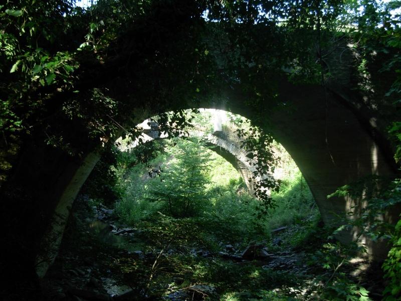Η Γέφυρα του Πλαστήρα στην Άνω Καλεντίνη Dscn0715
