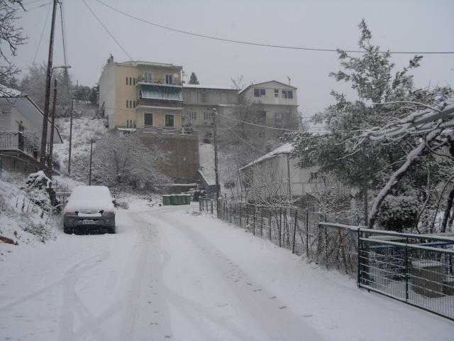 Χιόνι στο Χωριό Dscn1210