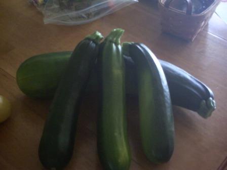 First harvest of 2010 - Zuchinni & Squash Pict0044