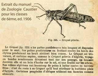 Billets de nécessité de SIDI-BEL-ABBÉS Algérie Zoolog10