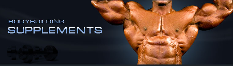 BodyBuilding Forums