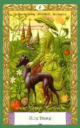 Signification des cartes KIPPER Mystiques 06_dam10