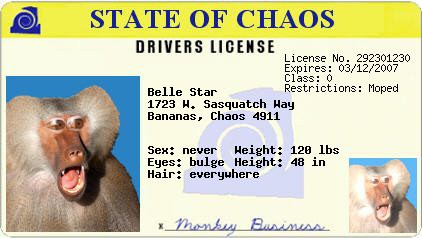 Check your driver's license Belle_10