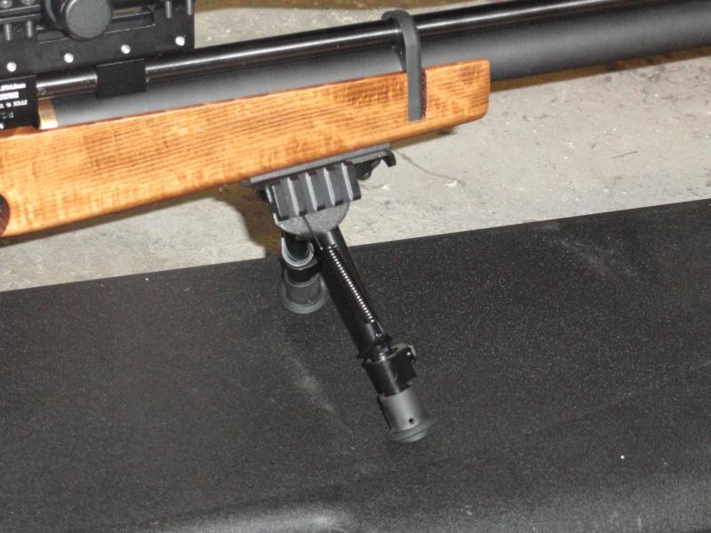 mes armes tout simplement Dsc00416