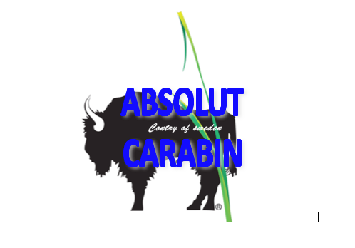 absolutcarabin