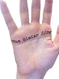 Simian Line / Single Transverse Palmar Crease Simian12