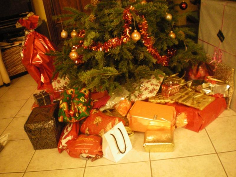 Vos cadeaux de Noël - Page 2 100_0011