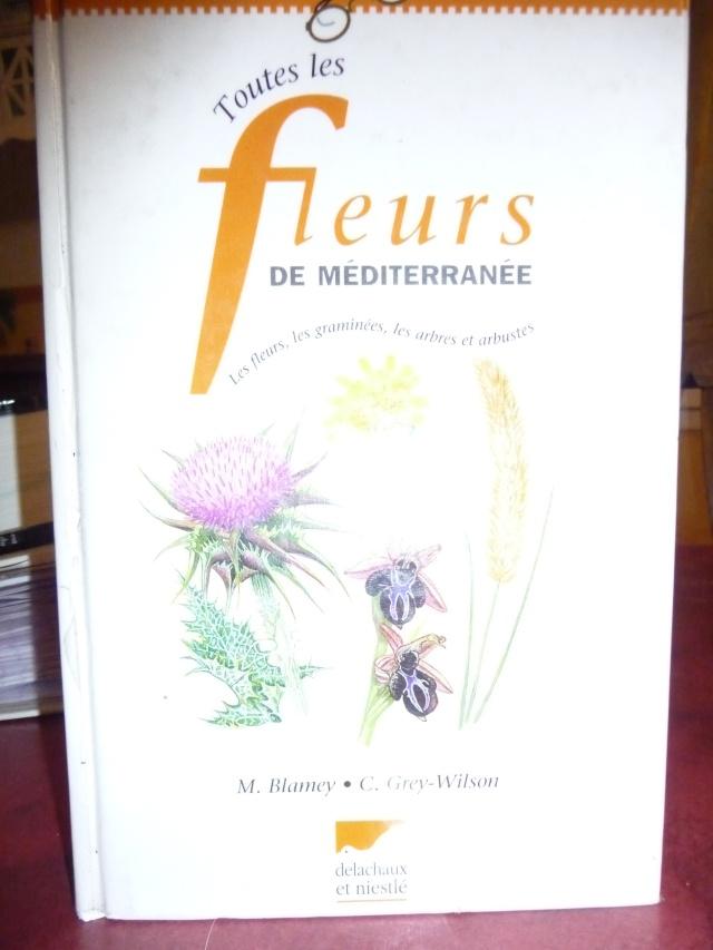 """""""Toutes les fleurs de méditerrannée"""". P1120818"""