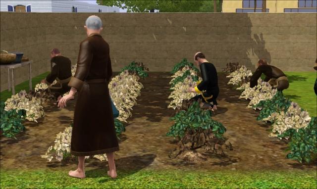 [Challenge sims 3] Les Frères Monastère - Page 4 2410