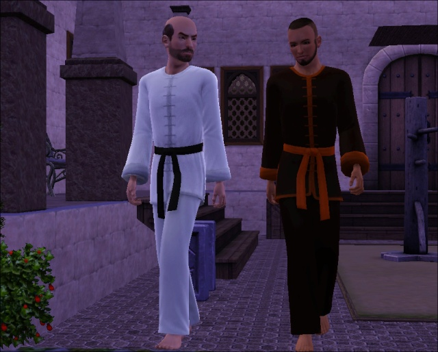[Challenge sims 3] Les Frères Monastère - Page 3 711