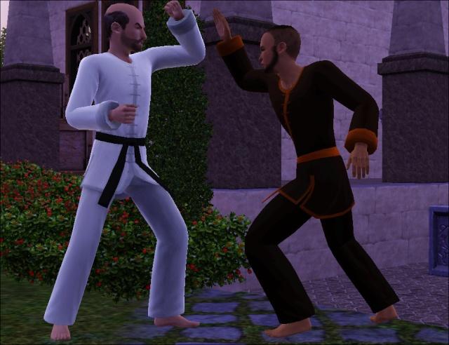 [Challenge sims 3] Les Frères Monastère - Page 3 811