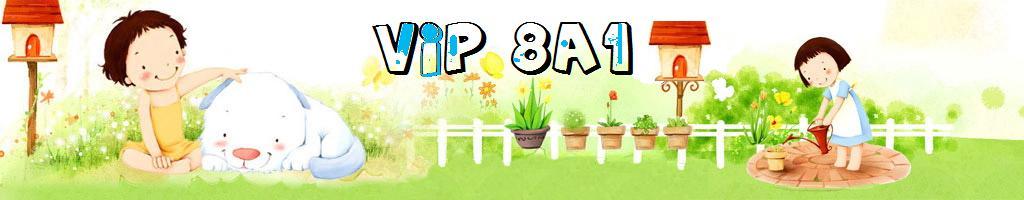 8A1 LÀ VIP