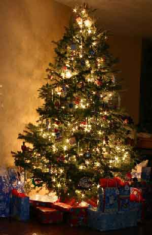 Joyeux Noel Navida10