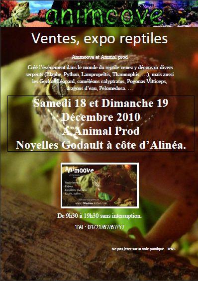 Vente Expo Réptile organiser par nous même (Animoove)dans le nord pas de calais (62950) Afiche10