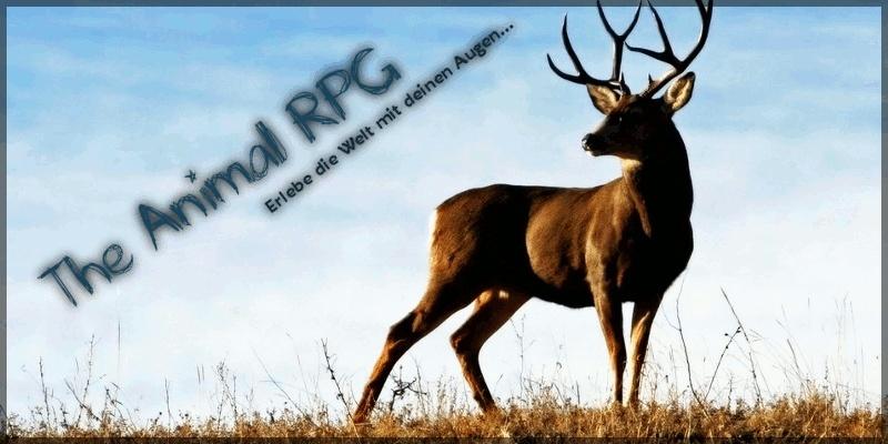 Animal-RPG