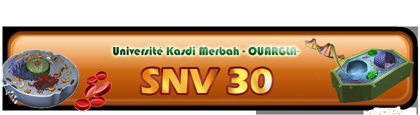 forum snv ouargla