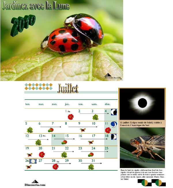 Topic photos/video délire ! - Page 11 Lunair10
