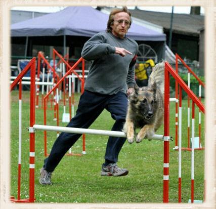 Belgique, le club sport canin d' Antheit organise concours agility Michel11