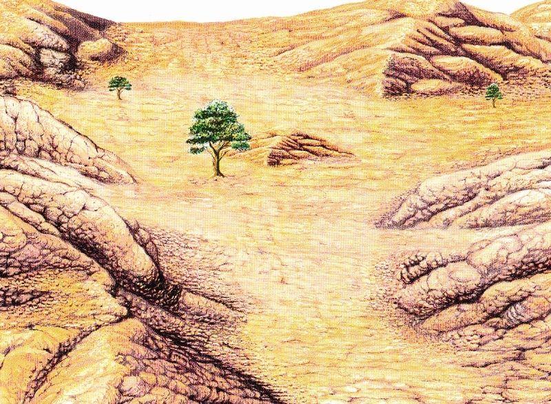 Le récit de Hajar et Ismaël et leur installation dans la vallée de la Mecque Mekka_10
