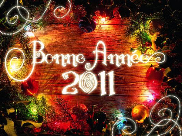 Bonnes Fêtes et Meilleurs Vœux pour 2011 - Page 6 102-ca10